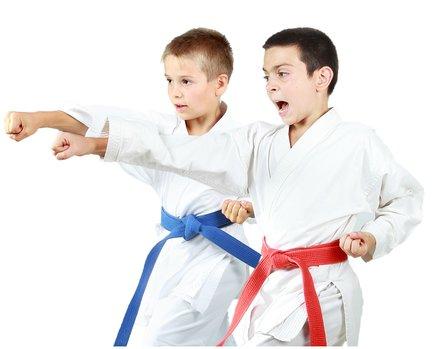 children doing karate