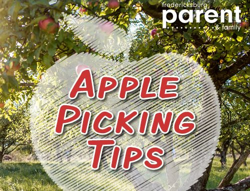 Top 10 Tips for Apple Picking Success