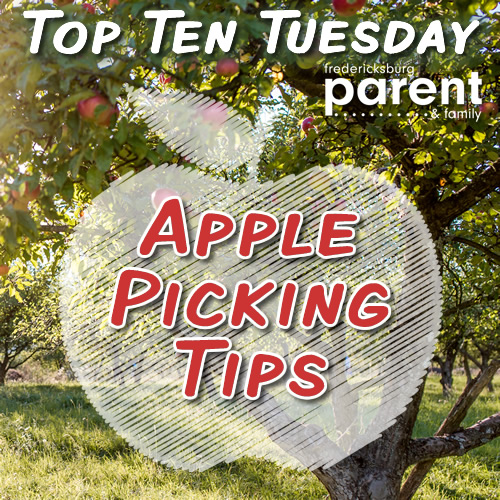 TTT apple picking web
